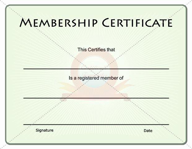 Llc Member Certificate Template Best Of 15 Best Images About Membership Certificate Template On