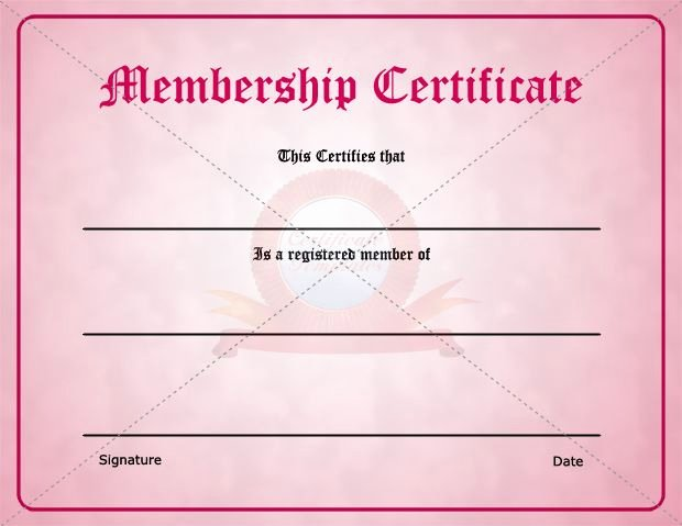 Llc Member Certificate Template Unique 29 Of Membership Certificate Template