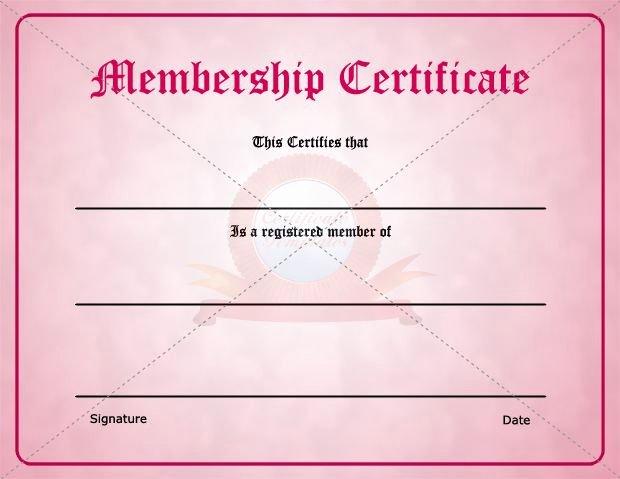 Llc Member Certificate Template Unique 29 Of Membership Certificate Template