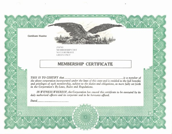 Llc Member Certificate Template Unique Standard Stock Certificates Samples