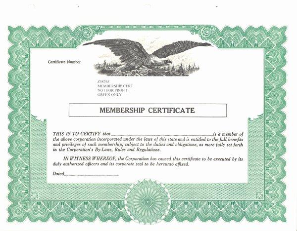 Llc Member Certificate Template Unique Standard Stock Certificates Samples