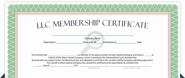 Llc Membership Certificates Templates Awesome Llc Membership Certificate Free Limited Liability