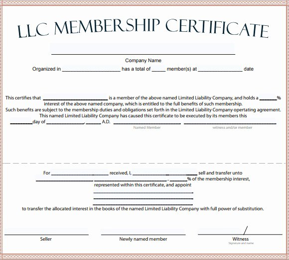 Llc Membership Certificates Templates Fresh Membership Certificate Template 15 Free Sample Example