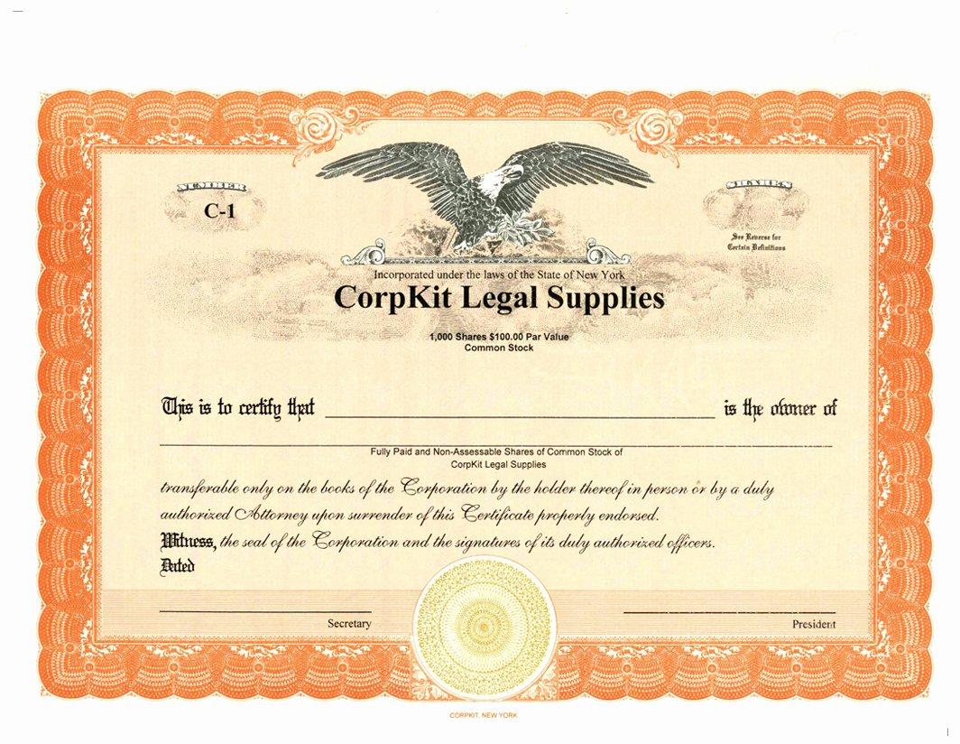 Llc Membership Certificates Templates Inspirational Llc Membership Certificate Sample Stock Certificate