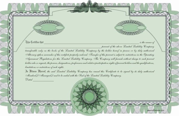 Llc Membership Certificates Templates Inspirational Pany Minutes