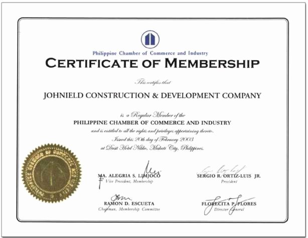Llc Membership Certificates Templates Inspirational Political Institutions Bong Mendoza S Blog