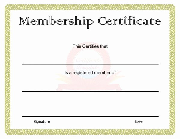 Llc Membership Certificates Templates Lovely 99 Free Printable Certificate Template Examples In Pdf