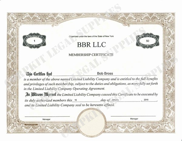 Llc Membership Certificates Templates Lovely Standard Wording Stock Certificates