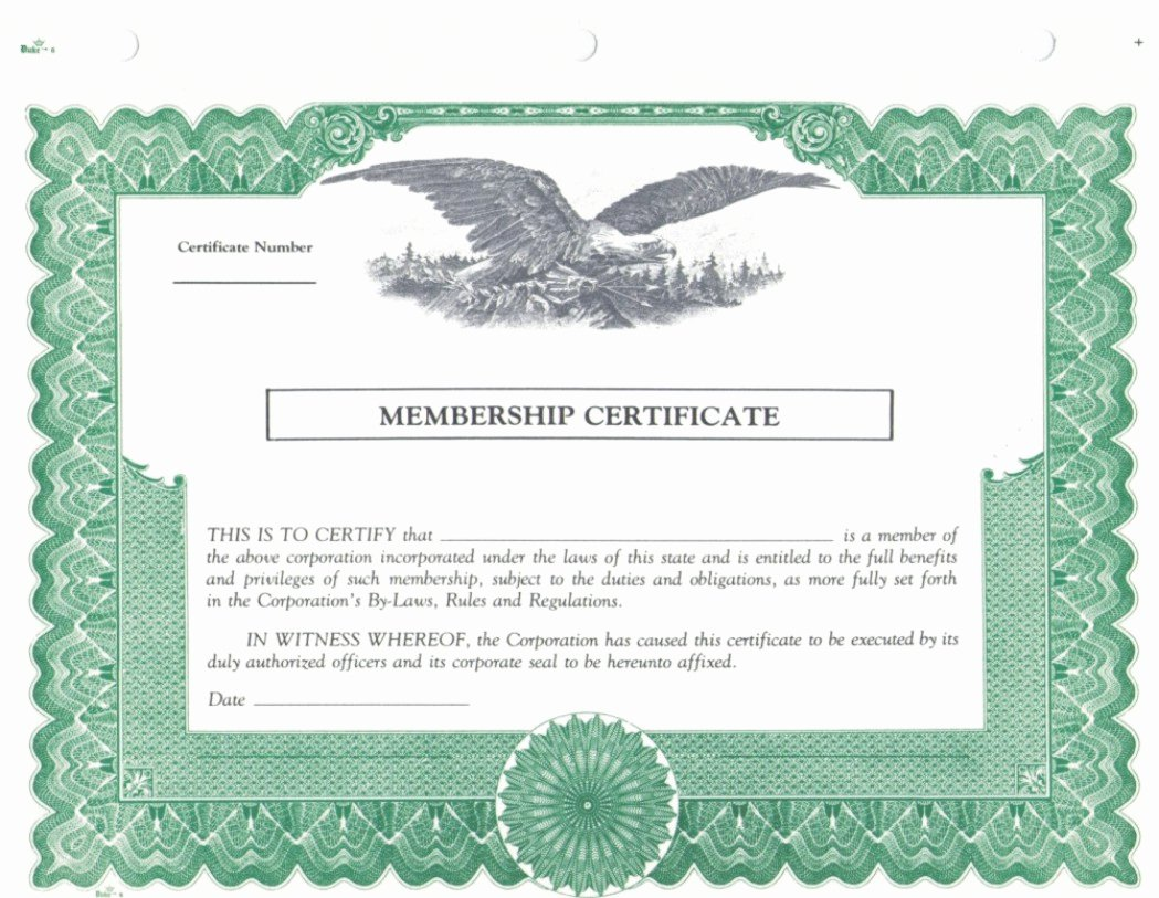 Llc Membership Certificates Templates New Duke 6 Membership Stock Certificates