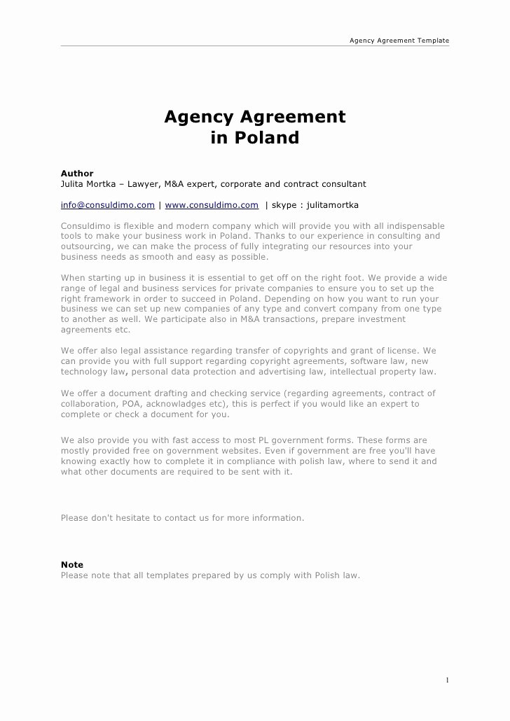 Marketing Agency Agreement Template Awesome Agency Agreement