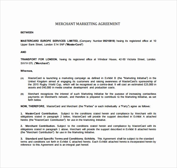 Marketing Agency Agreement Template Lovely Free 30 Sample Marketing Agreement Templates In Google