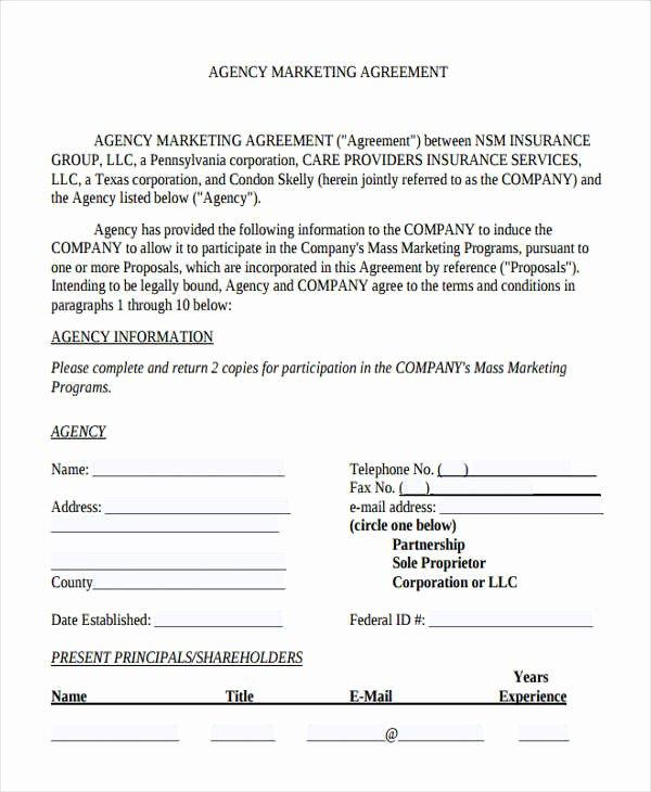 Marketing Agency Agreement Template Luxury 11 Agency Agreement Templates Word Pdf