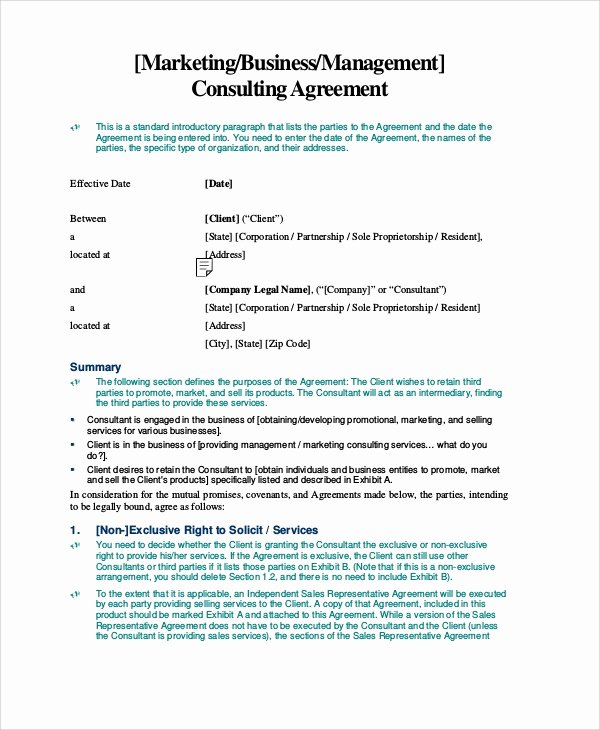 Marketing Consultant Contract Template Elegant Sample Standard Consulting Agreement 12 Documents In