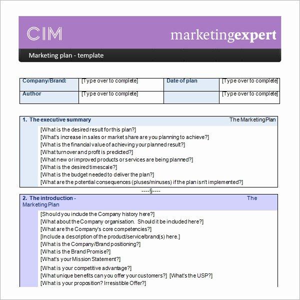 Marketing Plan Template Word Beautiful Sample Marketing Plan Template 19 Free Documents In