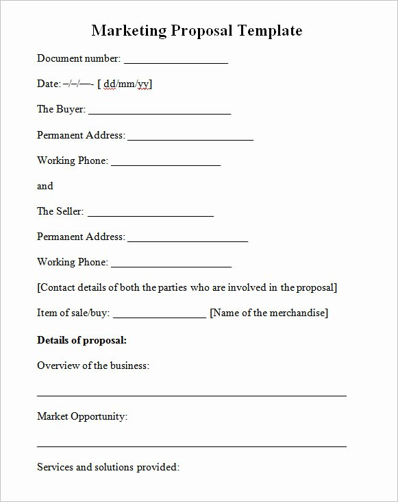 Marketing Plan Template Word Inspirational Sample Marketing Proposal Template 24 Documents In Pdf