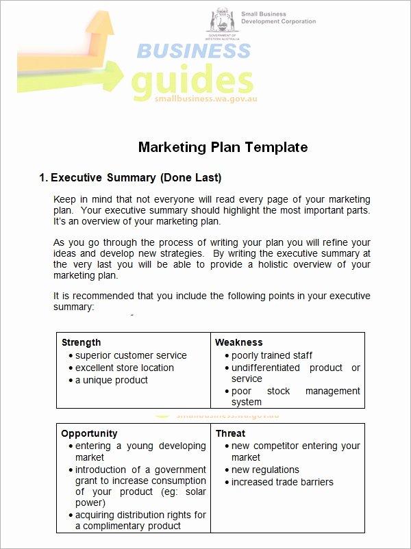 Marketing Plan Template Word Luxury Sample Marketing Plan Template 19 Free Documents In