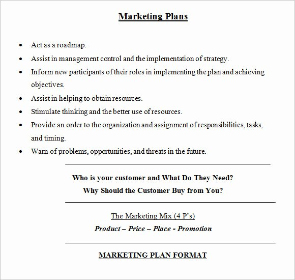 Marketing Plan Template Word New Sample Marketing Plan 18 Examples format