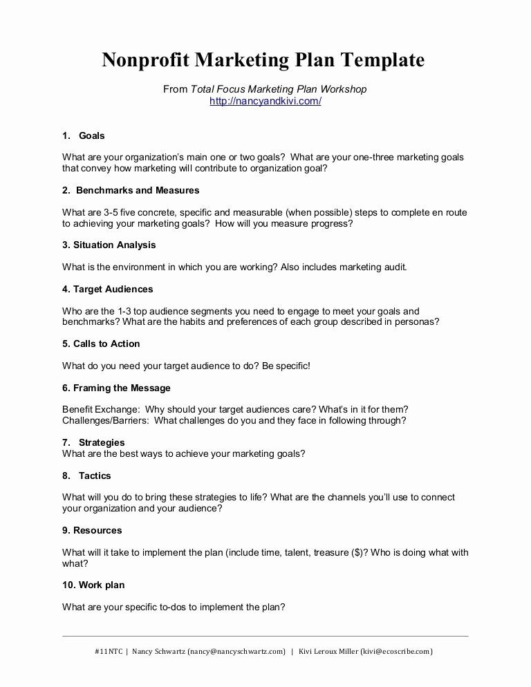 Marketing Proposal Template Word Awesome Nonprofit Marketing Plan Template Summary by Kivi Leroux