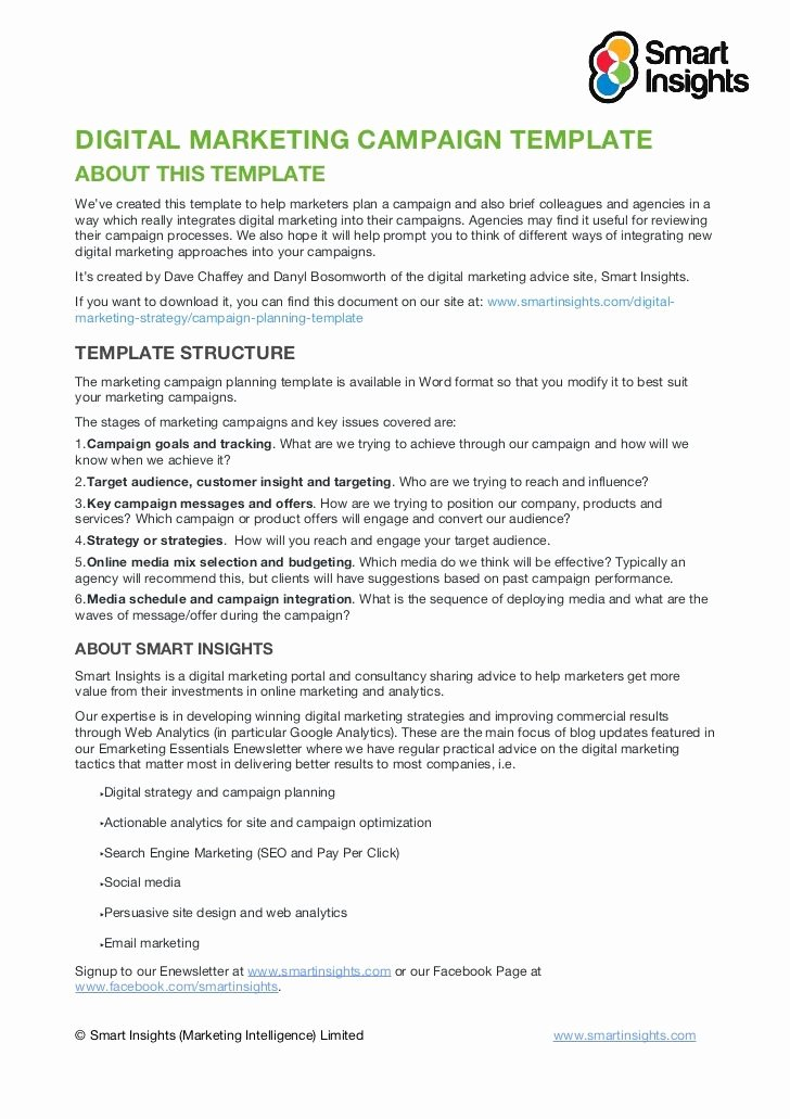 Marketing Proposal Template Word Inspirational Digital Marketing Campaign Templateabout This Templatewe