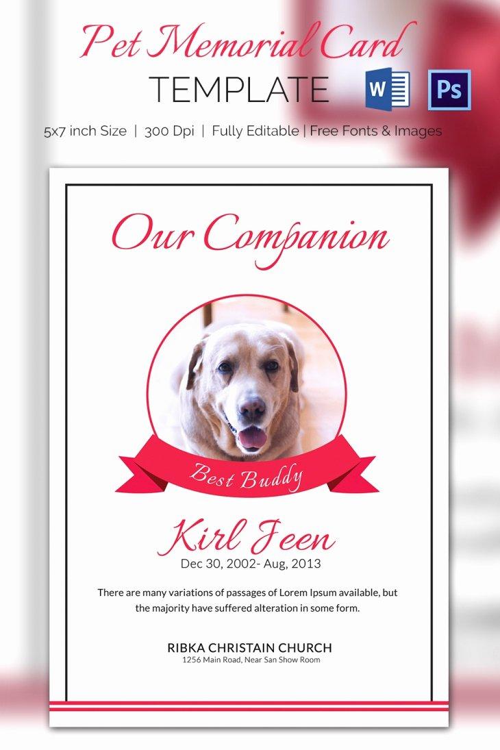 Memorial Card Template Free Inspirational 5 Pet Memorial Card Template Word Psd Pages