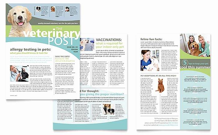 Microsoft Publisher Newspaper Templates Awesome Vet Clinic Newsletter Template Word & Publisher