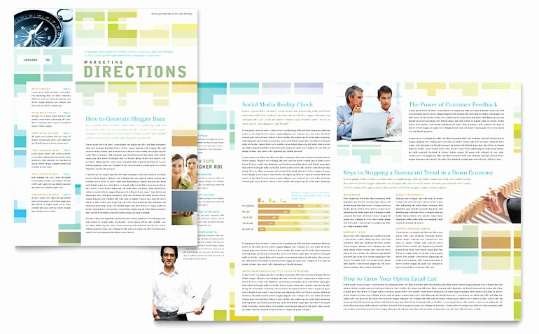Microsoft Publisher Newspaper Templates Elegant Business solutions Consultant Newsletter Template Word