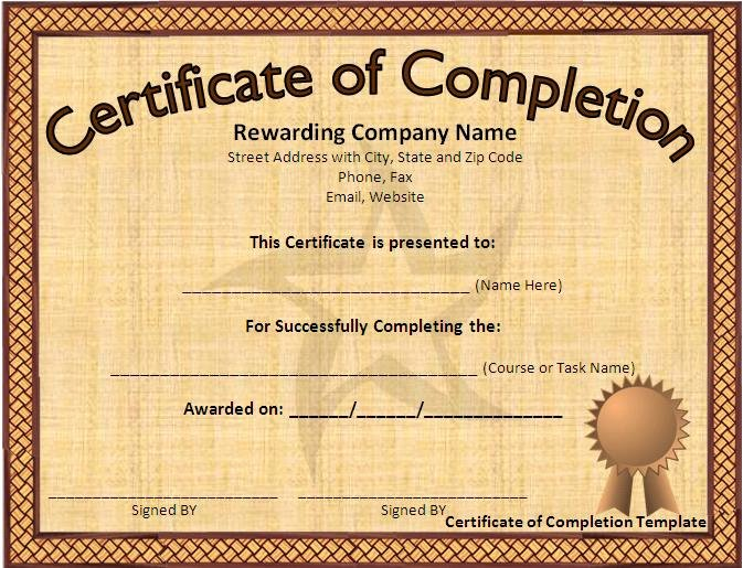 Microsoft Word Certificate Template Best Of 12 Certificate Templates Free Downloads