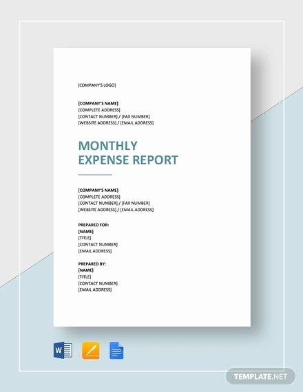 Monthly Expense Report Template Fresh 31 Expense Report Templates Pdf Doc