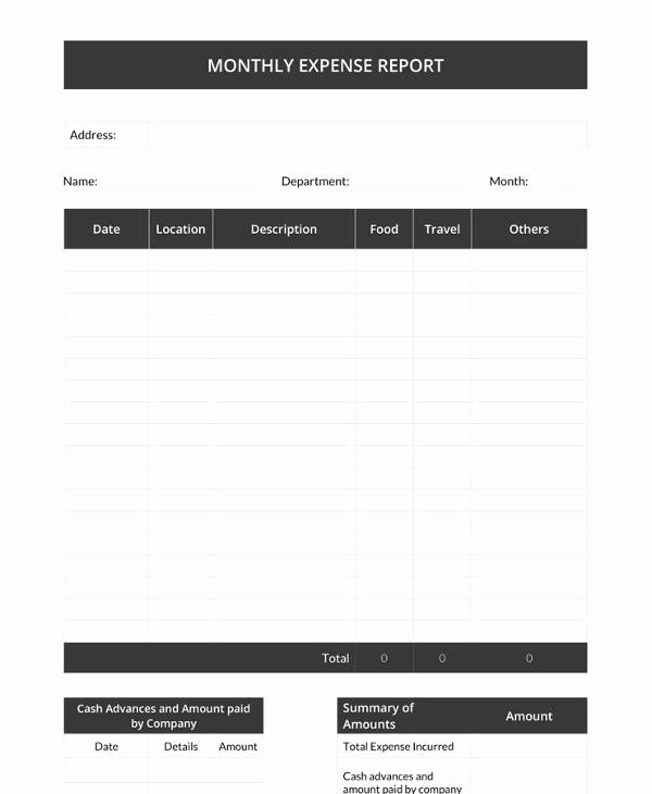 Monthly Expense Report Template New 18 Monthly Report Templates – Pdf Word Adobe