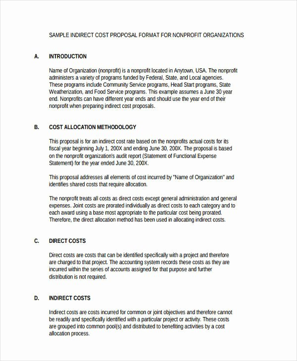 Non Profit Business Plan Template Beautiful Non Profit Business Plan Template