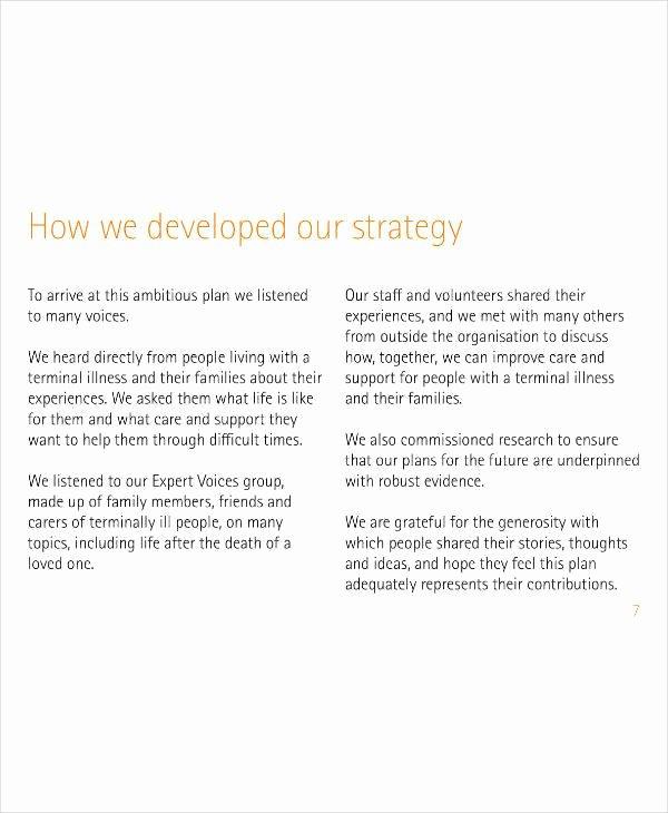 Nonprofit Business Plan Template Pdf Beautiful 9 Nonprofit organization Strategic Plan Templates