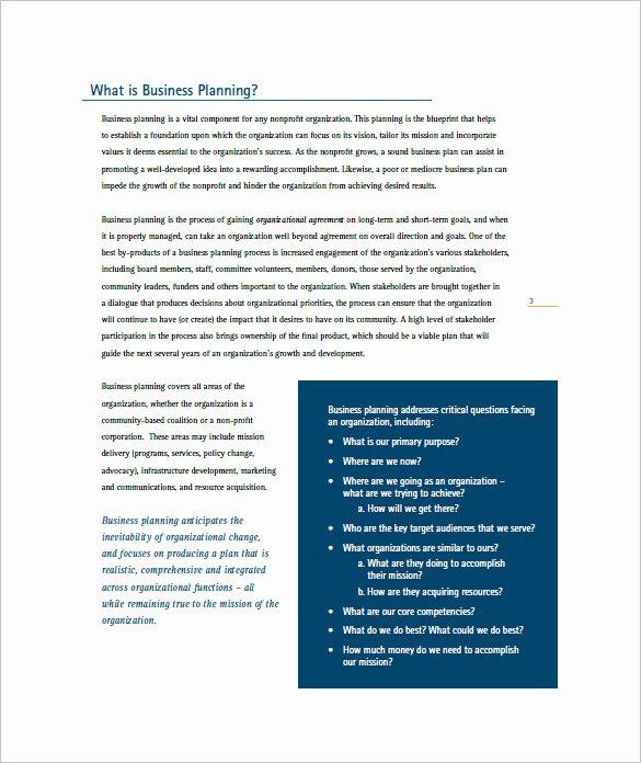 non profit business plan word
