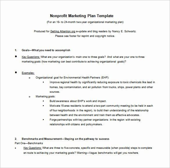 Nonprofit Business Plan Template Pdf Inspirational 9 Marketing Action Plan Templates Doc Pdf