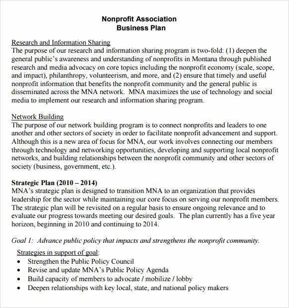 Nonprofit Business Plan Template Pdf Unique Non Profit Business Plan Template 13 Download Documents