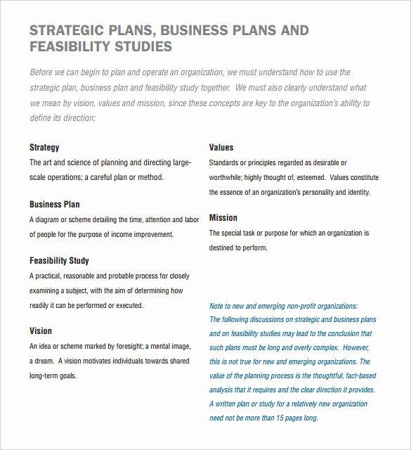 Nonprofit Business Plan Template Pdf Unique Non Profit Business Plan Template Free Word Pdf