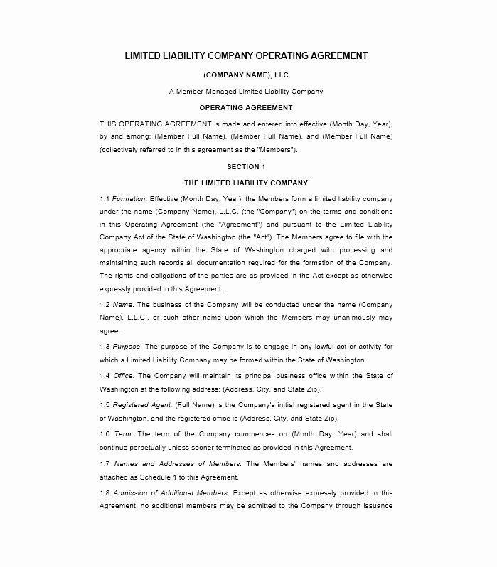 Operating Agreement Template Word Lovely 30 Free Professional Llc Operating Agreement Templates