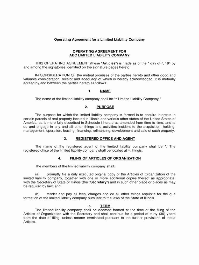 Operating Agreement Template Word Luxury Llc Operating Agreement Template 6 Free Templates In Pdf