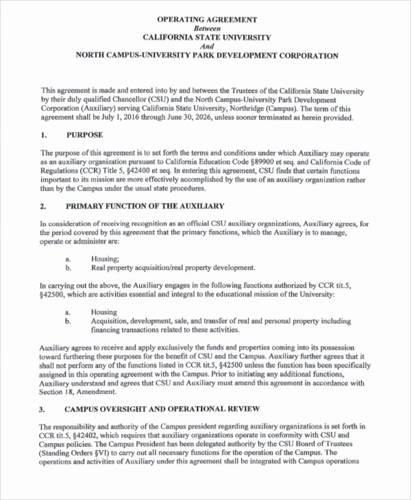 Operating Agreement Template Word Luxury Operating Agreement Template 13 Free Word Pdf Google