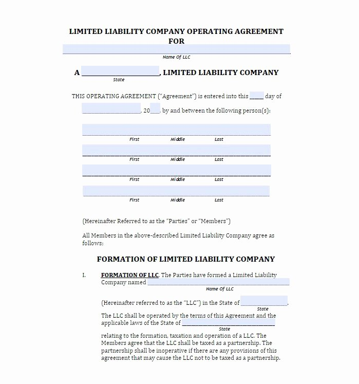 Operating Agreement Template Word Unique 30 Free Professional Llc Operating Agreement Templates
