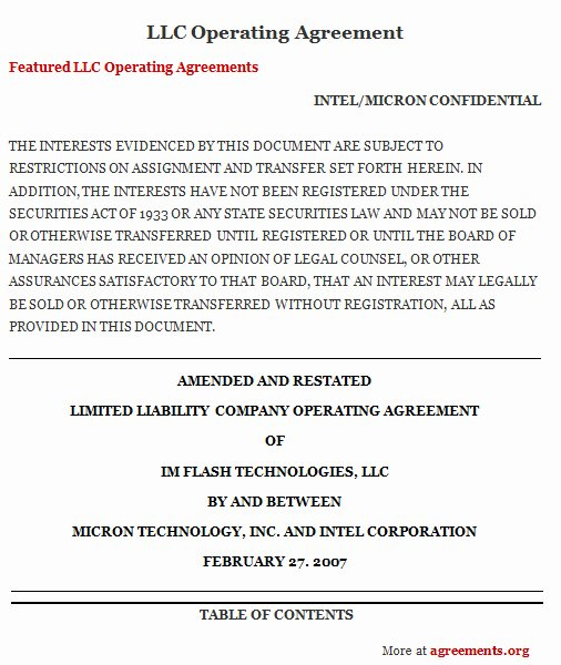Operating Agreement Template Word Unique Llc Operating Agreement Download Word & Pdf