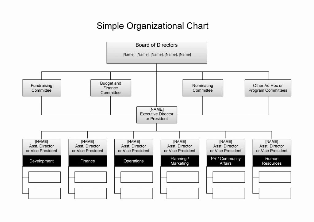 Org Chart Template Word Beautiful 25 Best Free organizational Chart Template In Word Pdf Excel