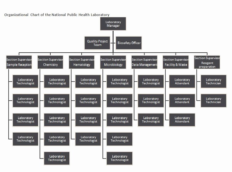 Organization Chart Template Excel Luxury 40 Free organizational Chart Templates Word Excel