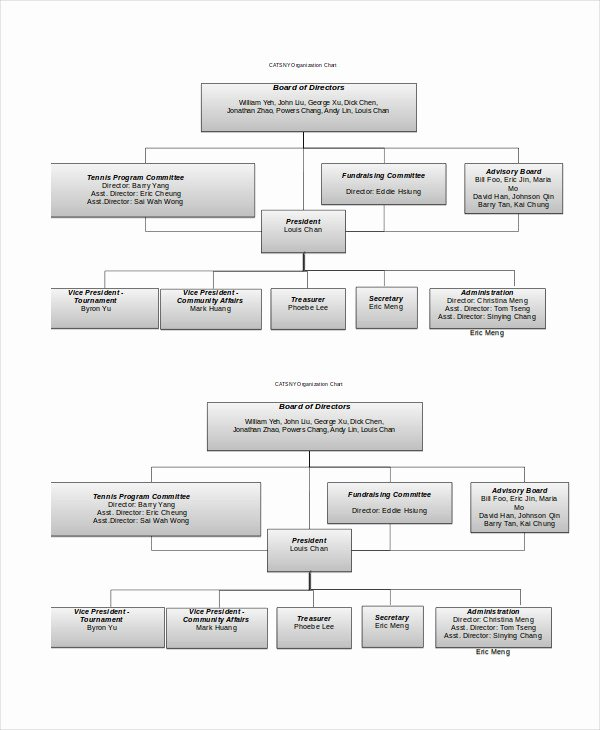 Organization Chart Template Excel Luxury organizational Chart 9 Free Word Pdf Documents