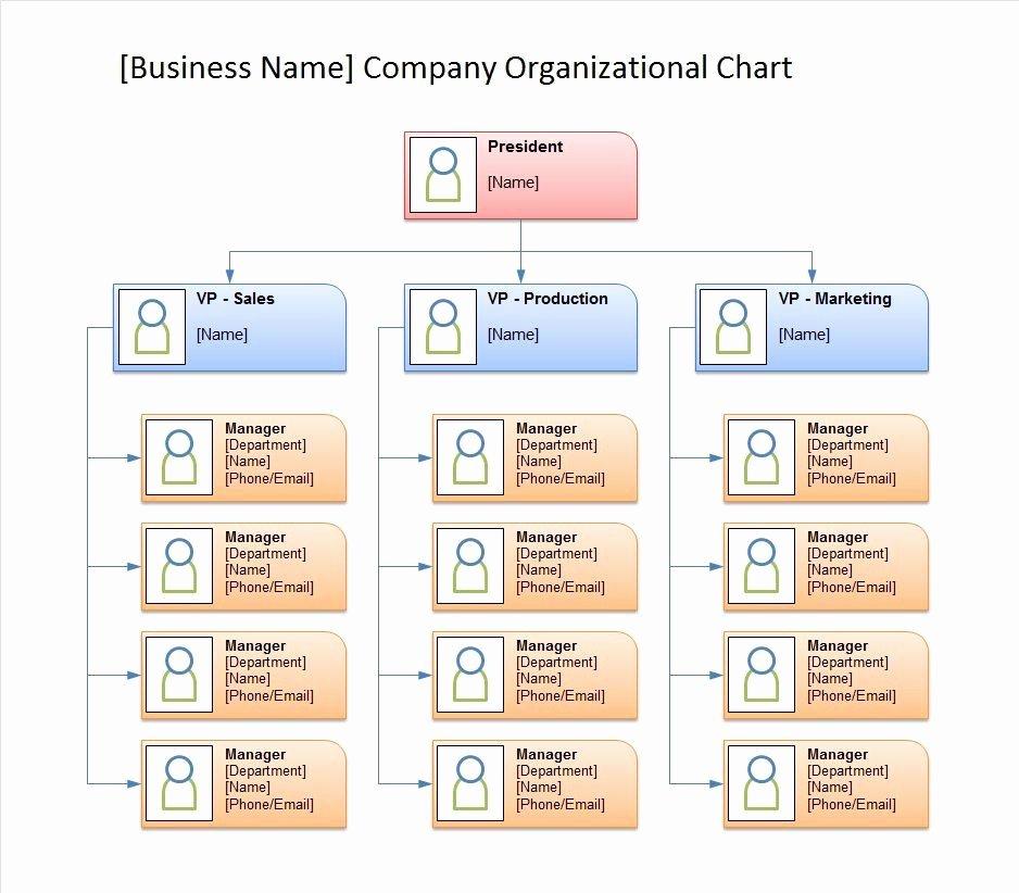 Organizational Chart Template Free Beautiful 40 Free organizational Chart Templates Word Excel