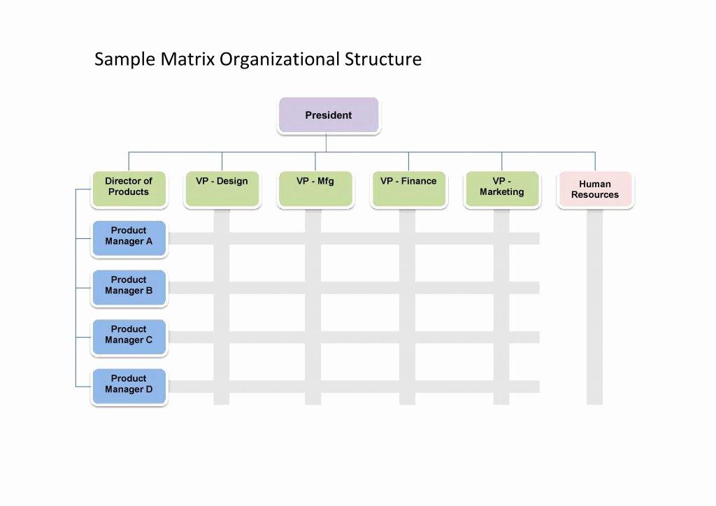 Organizational Chart Template Word Elegant 25 Best Free organizational Chart Template In Word Pdf Excel