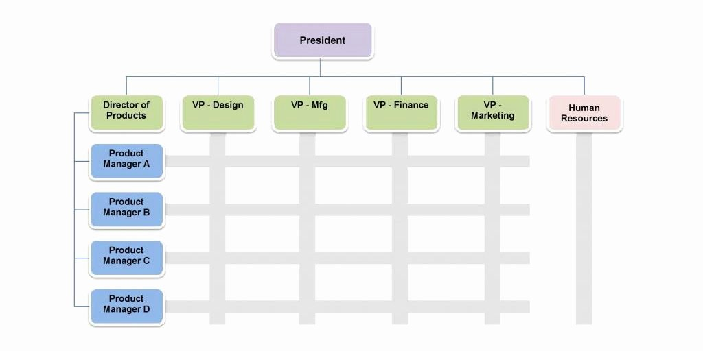 Organizational Chart Template Word Luxury 25 Best Free organizational Chart Template In Word Pdf Excel