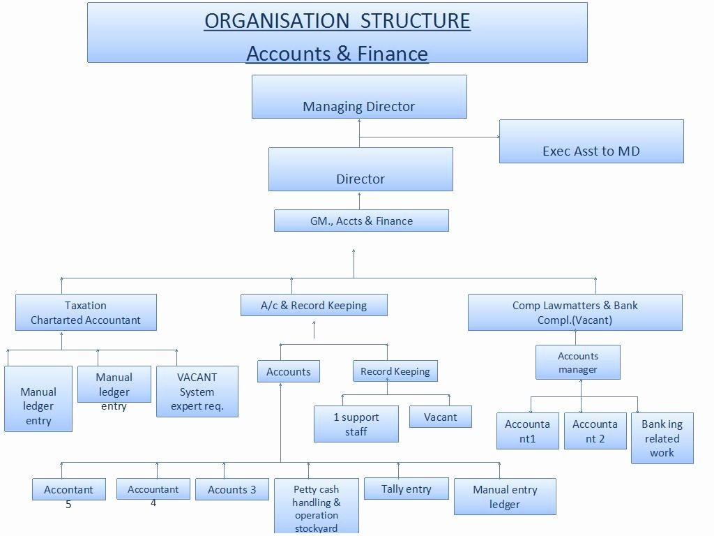 Organizational Chart Template Word New organization Chart Ppt Template