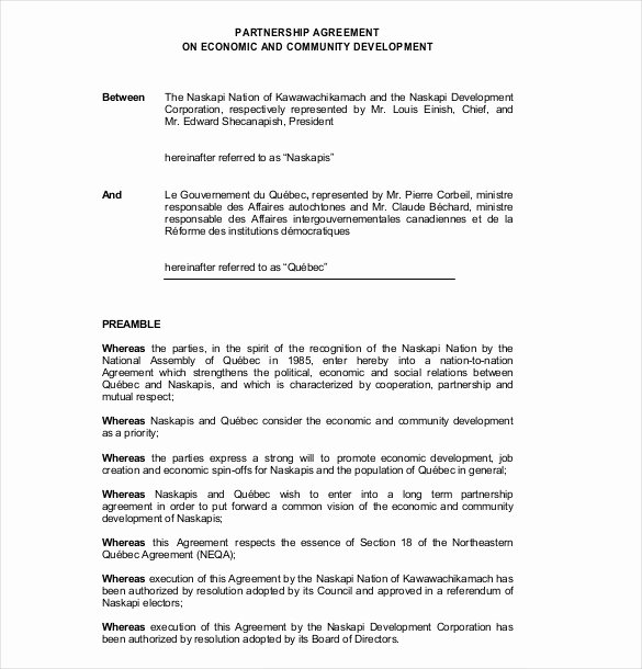 Partnership Contract Template Free Best Of 21 Partnership Agreement Templates – Free Sample Example