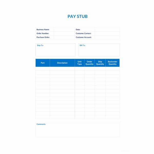 Pay Stub Template Word Document Awesome 24 Pay Stub Templates Samples Examples & formats