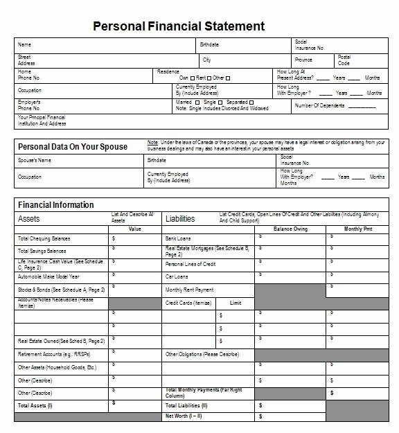 Personal Financial Statement Template Free Elegant 40 Personal Financial Statement Templates & forms